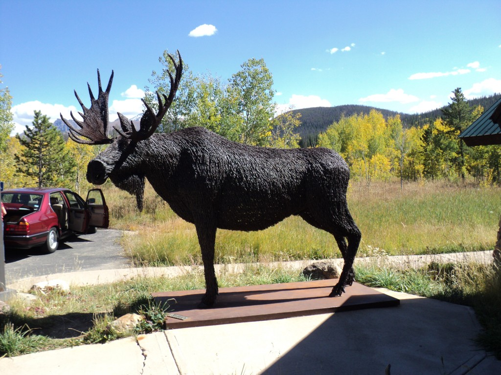 The Barbed wire Moose at Moose Center